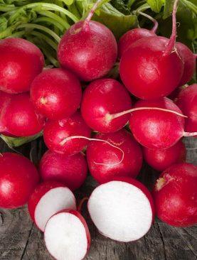 Ridichi Cherry Belle 10000 Seminte